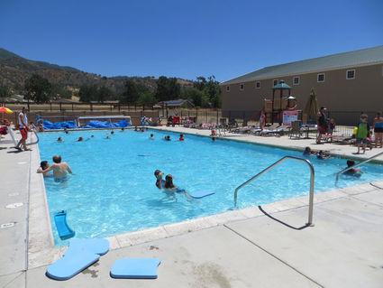 the pool is open the loop newspaper