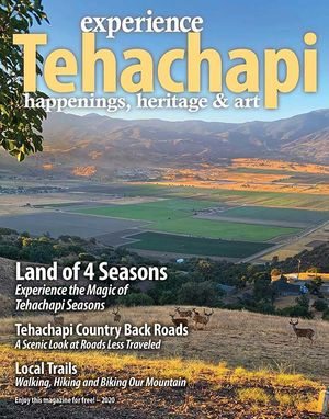 CLICK HERE to read The Loop's 2020 Experience Tehachapi Magazine!