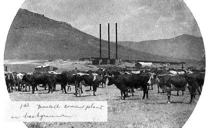 cement plant circa 1914 - The Loop Newspaper